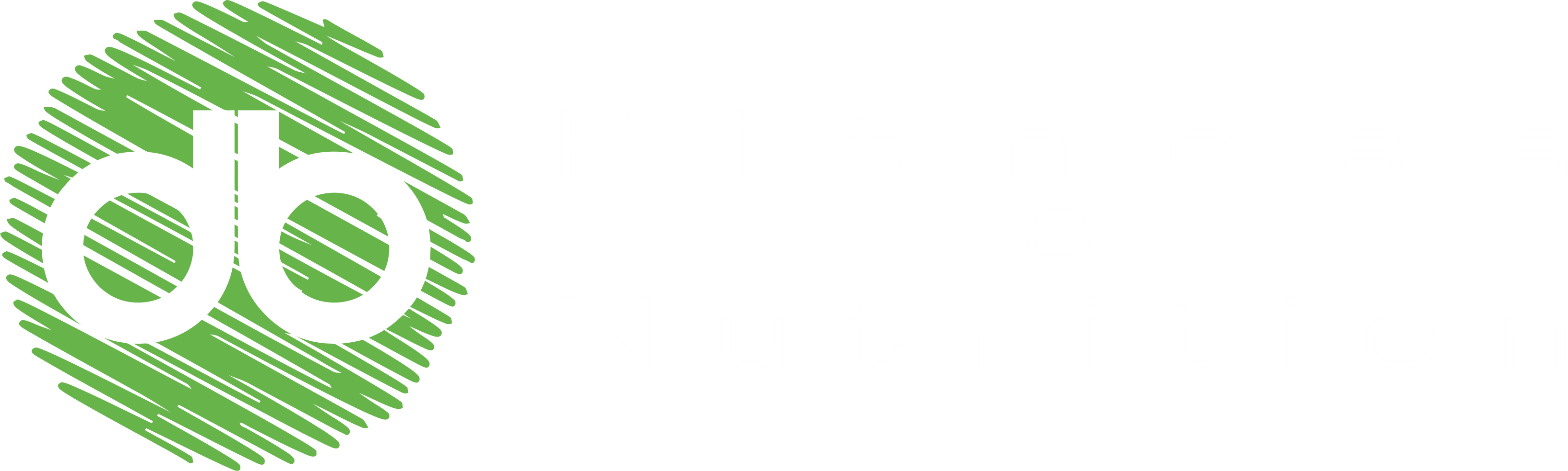 DB Fitness and Nutrition logo - Fitness & Nutrition